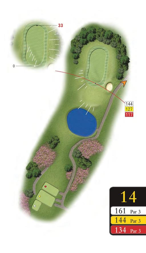 The Woods - Hole 14 - Sandford Springs